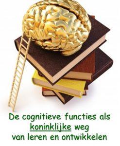 cognitieve_functies_hersenen_koninklijk