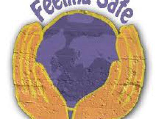 Feeling Safe Program